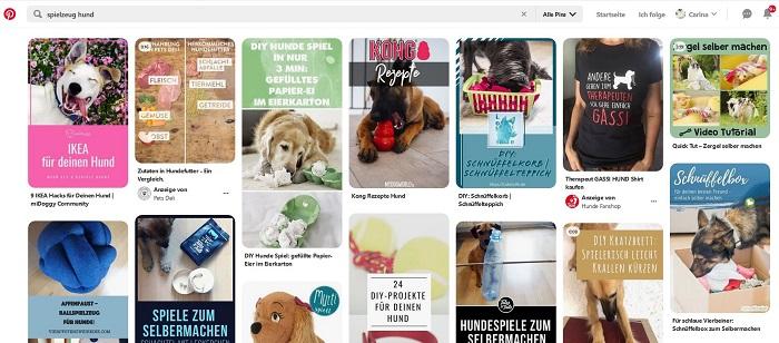 Pinterest Hundespielzeug
