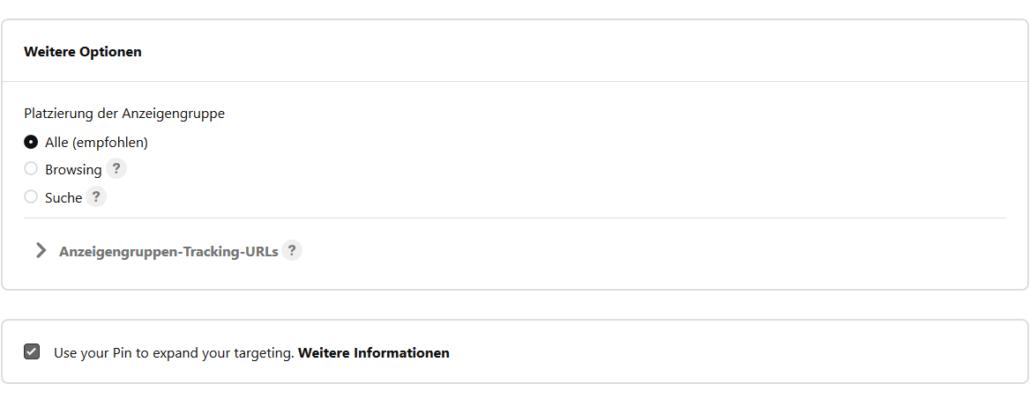 Bei der Platzierung deiner Pinterest Anzeigen hast du zwei Optionen.